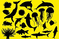 Ocean Animals Vector Silhouettes