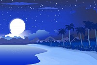 Beach at Night Vector