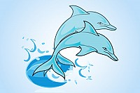 Blue Dolphins Vector Graphic