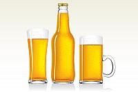 Cold Beer Vector