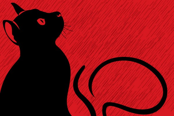 Black Cat on Red Background Vector