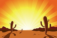 Sunrise Desert Cactus Vector Illustration