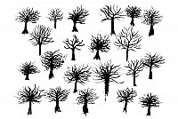 Ink Tree Vector Silhouettes