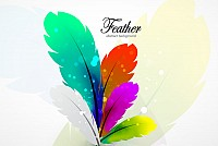 Colorful Abstract Vector Feathers
