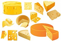 Swiss Cheese Vector Collection