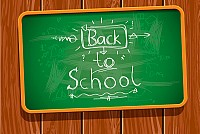 School Chalk Borad Vector