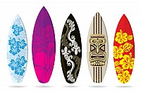 Patterned Surfboards Vector