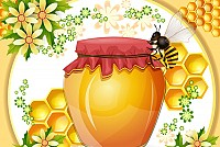 Beehive & Honey Vector Illustration