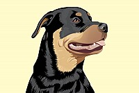 Rottweiler Vector Illustration