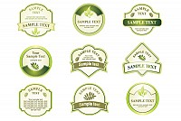 Green Bottle Vector Labels