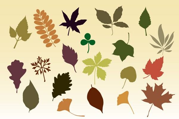 Autumn Leaves Vector Silhouettes