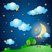 Beautiful Moonlight Vector Illustration