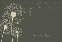 Dandelion Background Vector Illustration