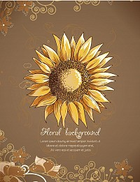 Hand Drawn Sunflower Vector Background