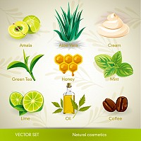 Natural Cosmetics Vector Set