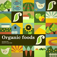 Organic Food Flat Vector Icons