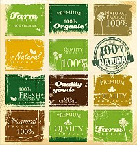 Organic Vintage Vector Labels