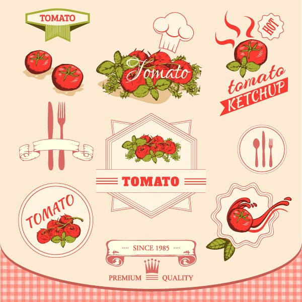 Tomato Vector Illustration